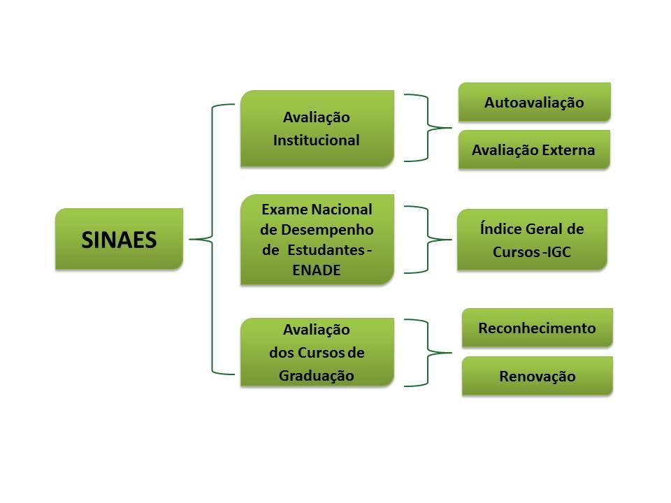 SINAES - descrição do sistema